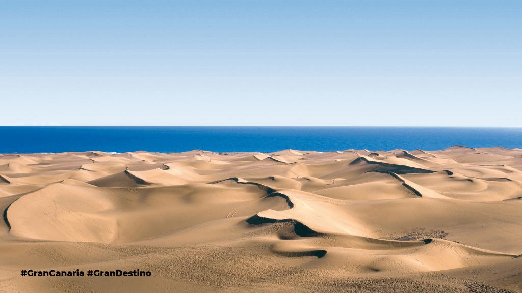 Cuáles son las mejores Playas de Canarias